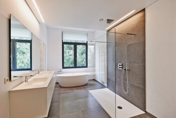 Frameless Shower Door Seal: How To Prevent Leakage