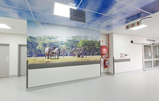 Life Cosmo Hospital04