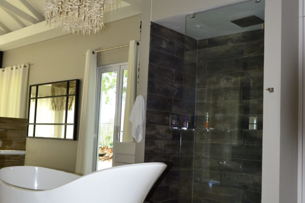 Frameless Shower Door 06